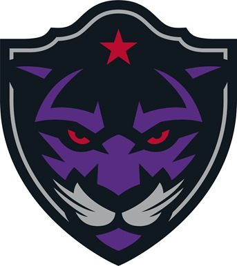 Panther City logo